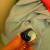 Ariel Deterjan Kapsülü Çamaşırları Boyadı!