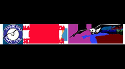 Martı Tur Logo