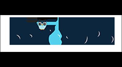netteKURS Logo