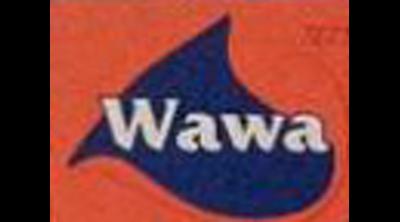 Wawa Ton Balığı Logo