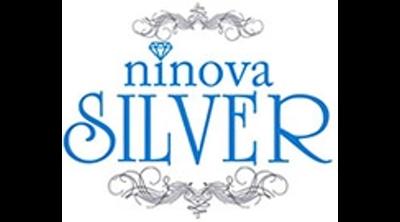Ninova Silver Logo