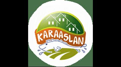 Karaaslan Camping Logo