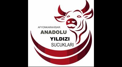 Anadolu Yıldız Sucukları Logo