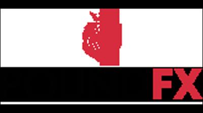 Pound Forex Logo