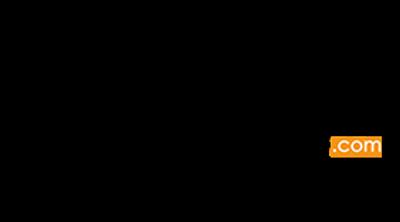 Bumeshop.com Logo
