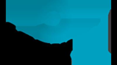Saytekmed Logo