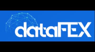 Datafex Logo