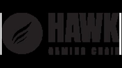 Hawk Gaming Chair Logo
