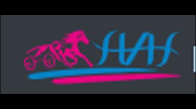 Has Otomotiv Logo