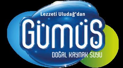 Gümüş Su Logo