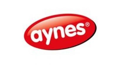 Aynes Gıda Logo