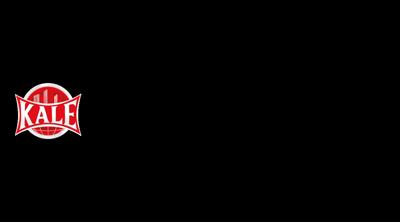Kale Güvenlik Sistemleri Logo