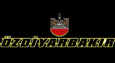 Öz Diyarbakır Seyahat Logo