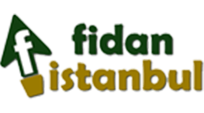 Fidan İstanbul Logo
