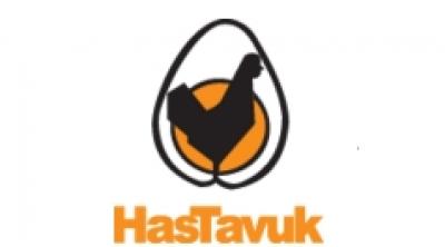 HasTavuk Logo