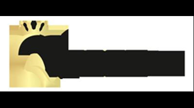 Queenzz Estetik ve Güzellik Merkezi Logo